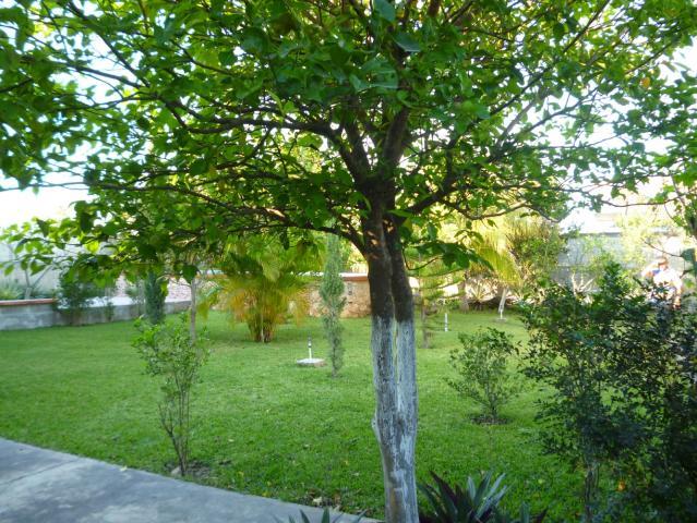 Casa tipo villa en venta en cholul zona norte de merida for Jardin 800m2